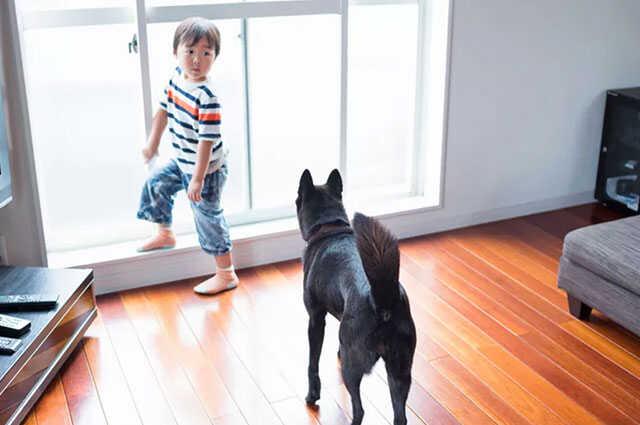 durable hardwood floors